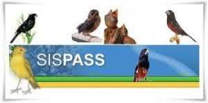 sispass 300x148 Sispass   Cadastro
