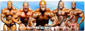 mr-olympia-competicao-300x109